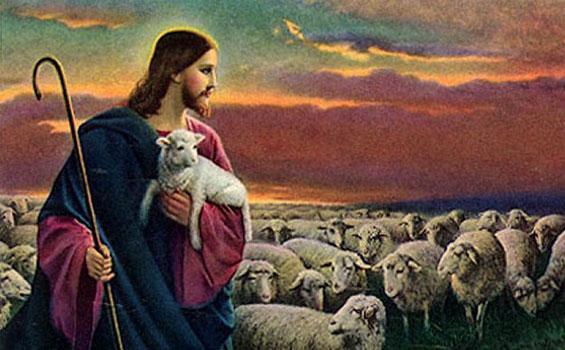 Jika Anda Domba-dombaNya, Anda Pasti Mendengar dan Mengenal Suara Sang Gembala