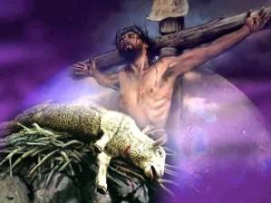 Jangan Memakan Anak Domba Mentah-mentah!